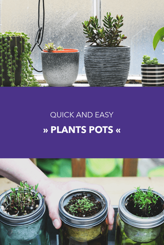 Plant Tips Pinterest Pin Template