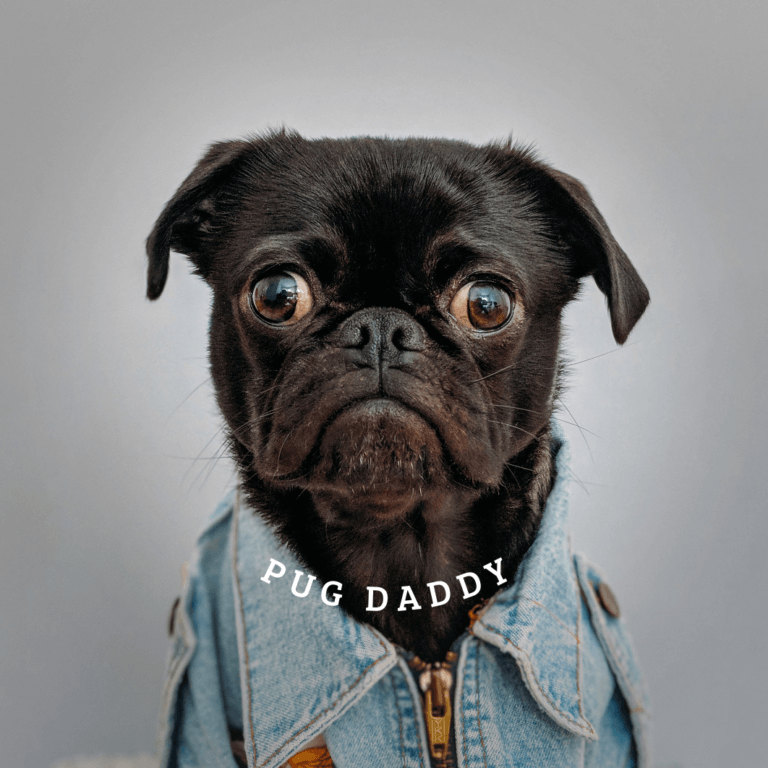 Popsocket Template With Pug 682c