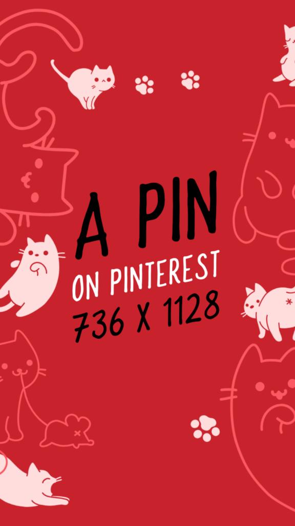 Pinterest Image Size Pin