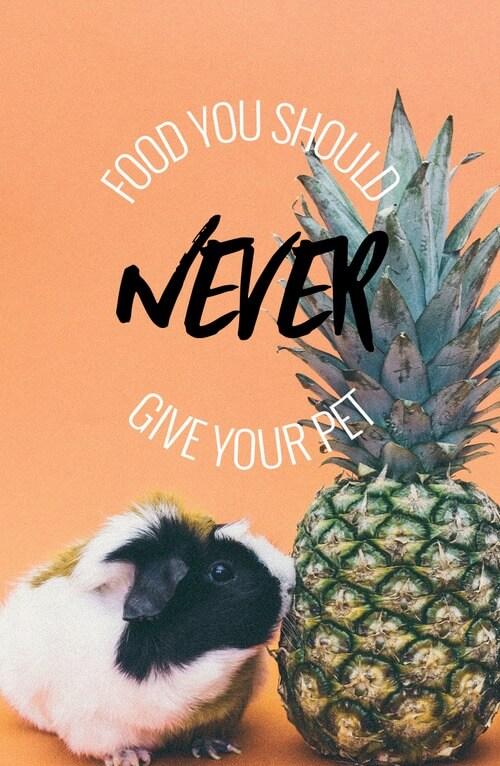 Food Pets Social Media Image Maker