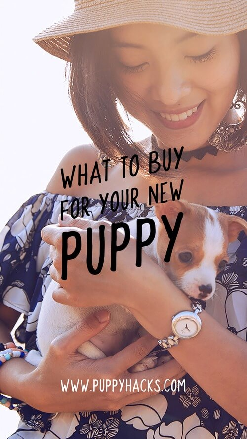 New Puppy Instagram Social Media Image Templates