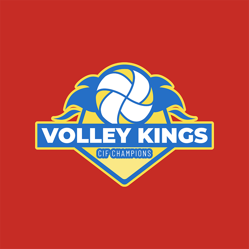 Volleyball Team Logo Maker With Cool Graphics